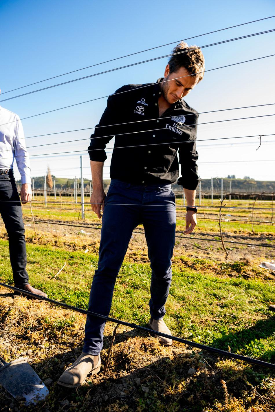 Blair Tuke from Emirates Team New Zealand plants a vine on Brancott Vineyard
