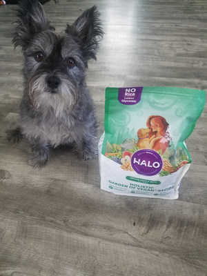 Halo® Holistic Garden of Vegan® for dogs jumped in front of the pack with two announcements this week – Halo was nominated for the 2018 VegNews Veggie Awards, and the brand launched a #VegPledge social media campaign for dog parents wanting to lower their carbon paw prints.