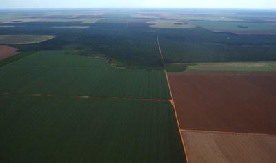 Island of native Cerrado in arable land_credit Gabriel Daldegan-TNC
