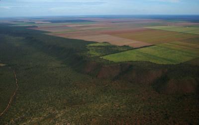 Native Cerrado bordering agricultural land_credit Gabriel Daldegan-TNC
