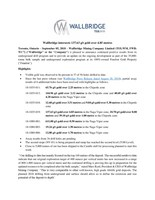Wallbridge intersects 137.63 g/t gold over 4.85 metres (CNW Group/Wallbridge Mining Company Limited)