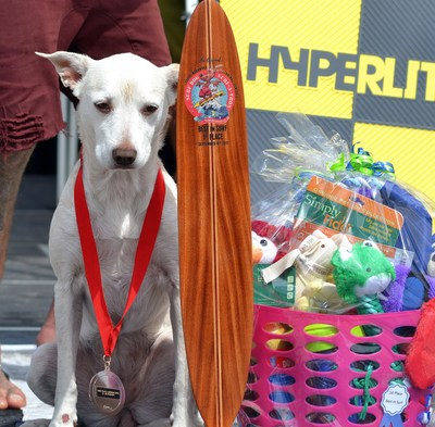 Best in Surf Winner Sugar - Helen Woodward Animal Center's 13th Annual Surf Dog Surf-a-Thon, presented by Blue Buffalo, Sunday, September 9th, 2018.