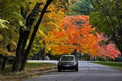 Get The Best Car Insurance Coverage - Compare Prices This Autumn