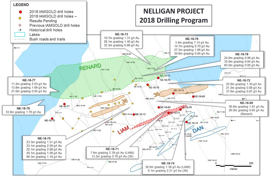 Figure 1: Nelligan drill hole plan map and highlighted 2018 assay results. (CNW Group/IAMGOLD Corporation)