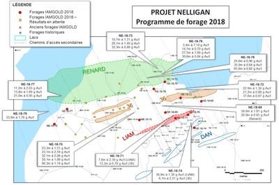 Figure 1 : Vue de plan des forages à Nelligan et des résultats d'analyse de 2018 (Groupe CNW/IAMGOLD Corporation)