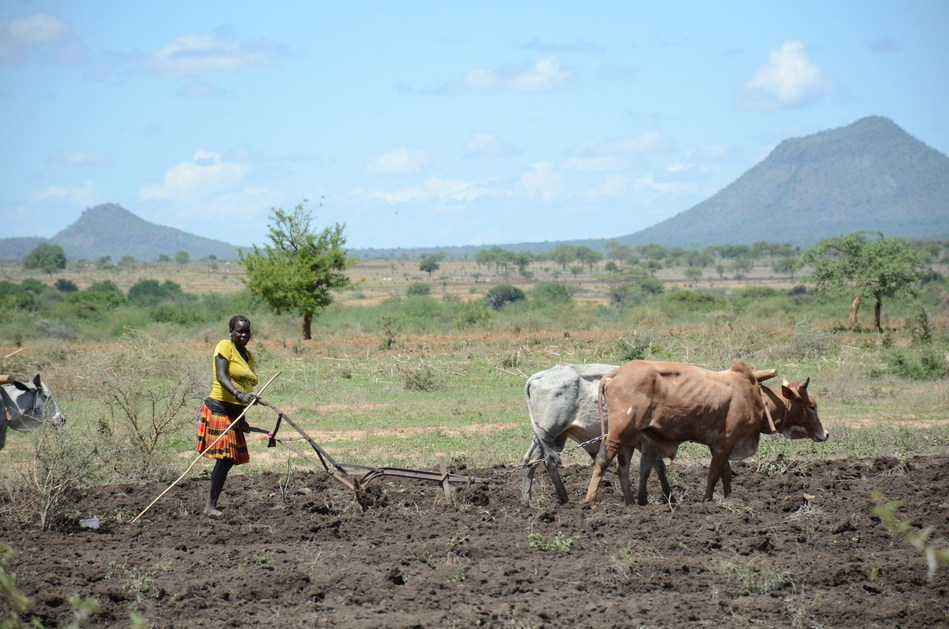 A woman ploughs her garden in preparation for planting in a village in Nakapiripirit town council, Uganda. © UNICEF/UN075828/Adriko (CNW Group/UNICEF Canada)