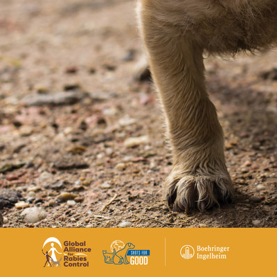 Boehringer Ingelheim to donate 75,000 doses of rabies vaccine to the Global Alliance for Rabies Control through SHOTS FOR GOOD Initiative