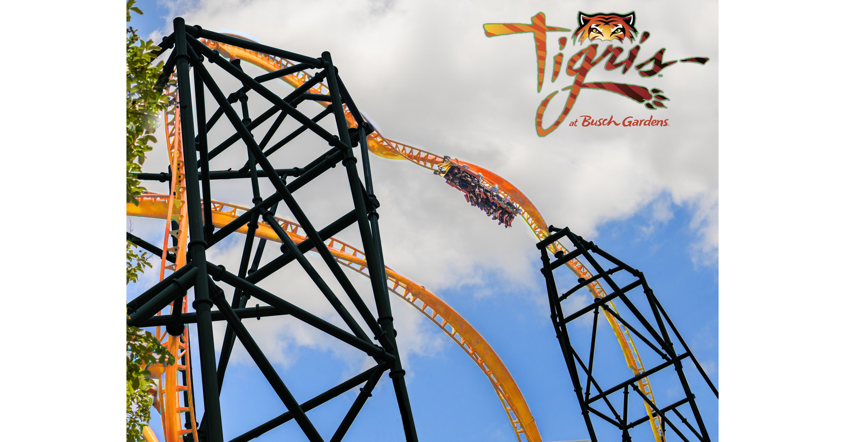 Busch Gardens Tampa Bay Announces New Multi-Launch Thrill