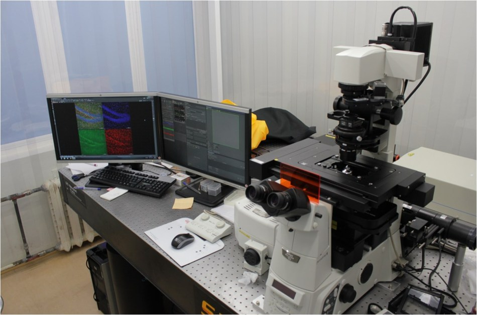 Intravital microscope (Pirogov Russian National Research Medical University (RNRMU)