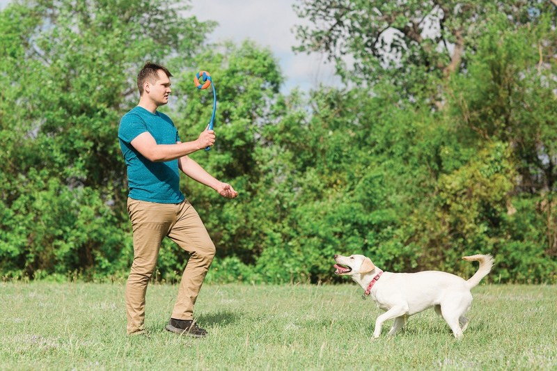 Celebrating National Fetch Day with the new Chuckit! RingChaser