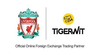 TigerWit Logo (PRNewsfoto/TigerWit)