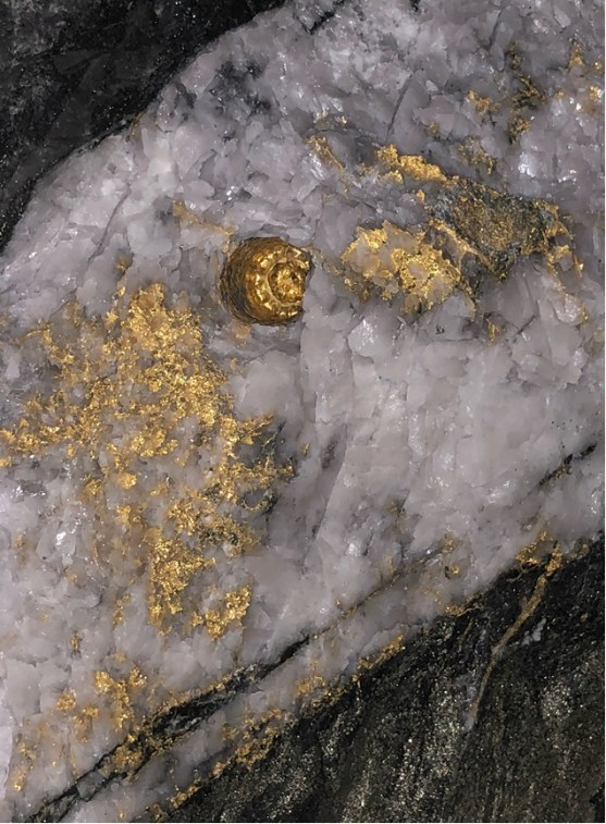 Figure 2: Close-up picture of the current back (looking up) of the Fathers Day Vein discovery at the Beta Hunt Mine showing significant visible coarse gold (CNW Group/RNC Minerals)