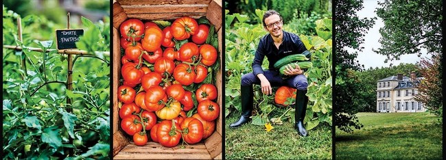 The Four Seasons Hotel George V in Paris: putting a stop to food waste and a kitchen garden with a virtuous biosystem.