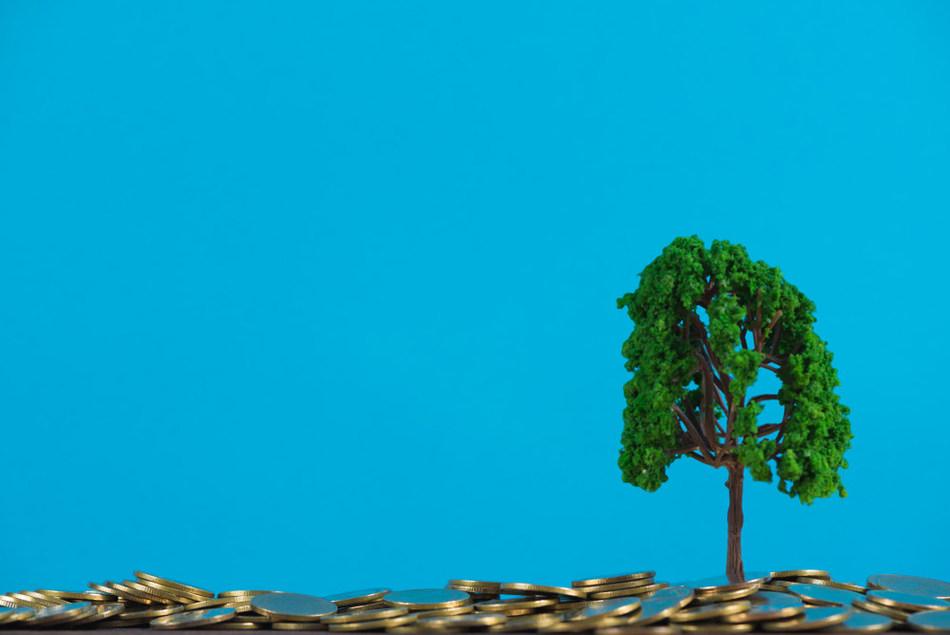 Saving the environment and saving costs