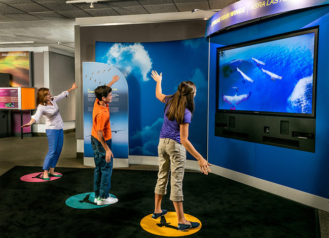 Fly like a bird and more in this world-class exhibition.