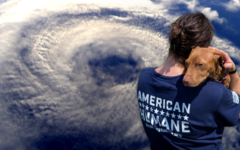 The American Humane Rescue team has deployed to help animals caught in the path of Hurricane Florence. (PRNewsfoto/American Humane)