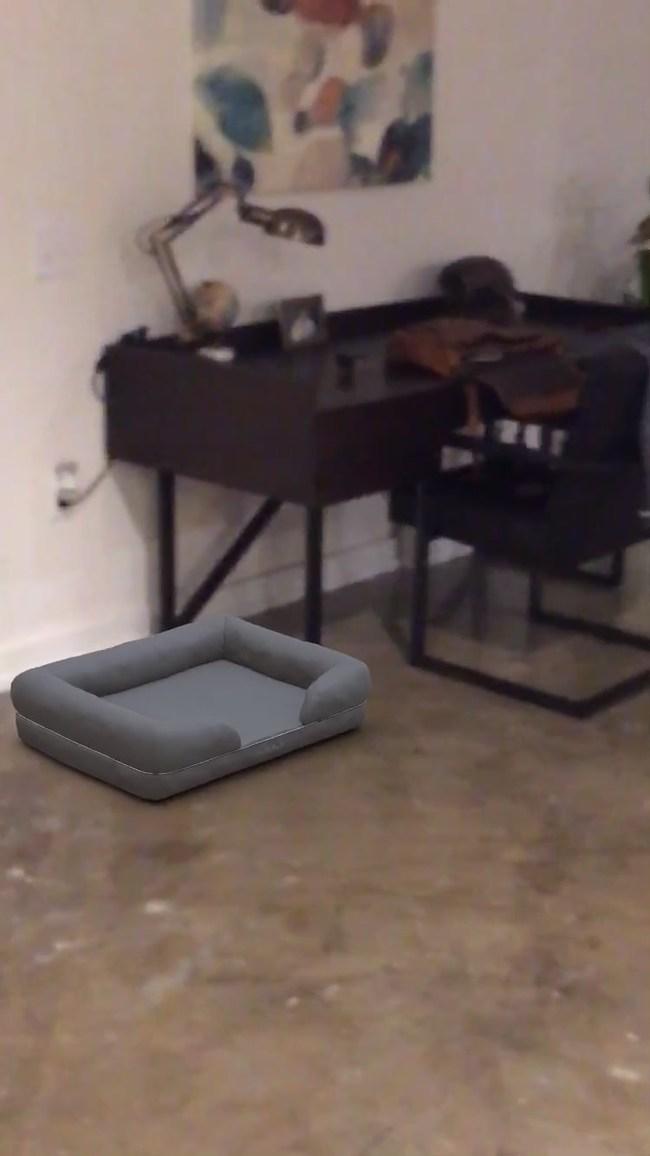 PupLounge Augmented Reality Screenshot