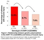 Juntendo University Research: The Genetics of Muscle Injuries