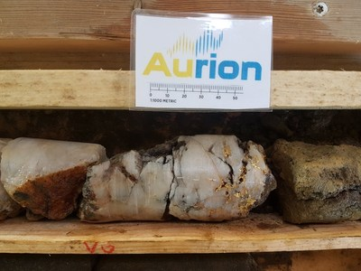 Coarse visible gold in drillhole AM18042; Note mineralization may not be representative across the whole property (CNW Group/Aurion Resources Ltd.)