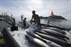 The Thai government spares no effort in its fight against illegal unreported and unregulated (IUU) fishing