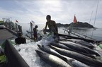 Significant Strides Made in Thailand's Battle against IUU Fishing