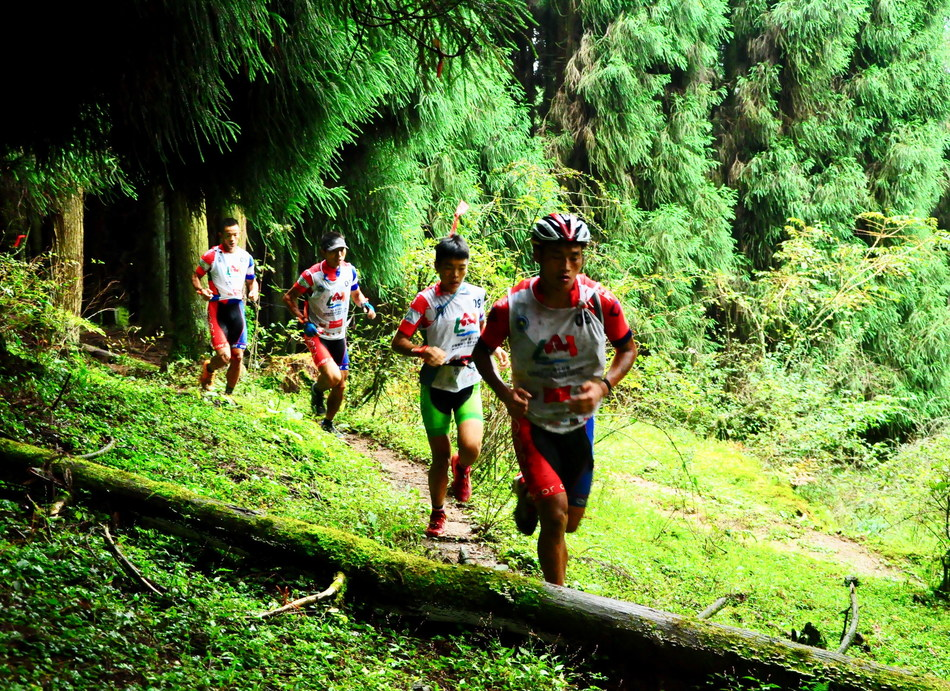 Team Runningfun are racing in the cross-country race in the Fairy Mountain's forest.