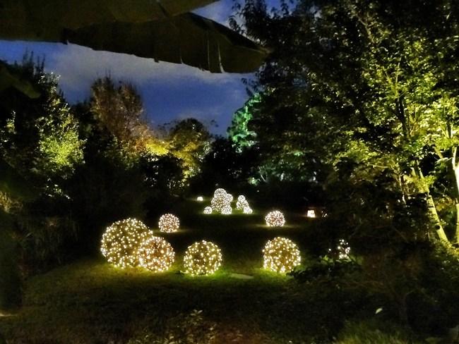 Moonlight in the Garden - November 6-17, 2018 - JC Raulston Arboretum at NC State University