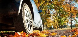 Use Car Insurance Quotes And Save Money This Fall