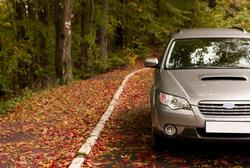 Save Car Insurance Money This Autumn!
