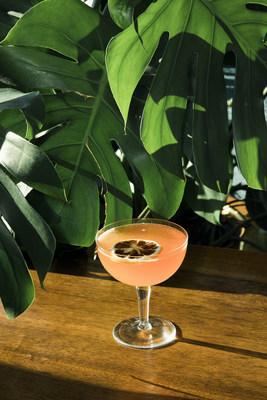 Le cocktail The Big Lift du bar The Watch That Ends the Night contient deux variétés de rhum et du miel de la Nouvelle-Écosse. (Groupe CNW/Air Canada)