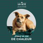 La campagne « Un jeté à la fois » d'Urban Barn vient en aide aux refuges de la SPCA à travers le Canada. (Groupe CNW/Urban Barn)