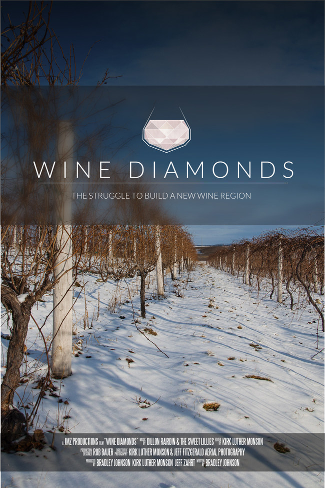Winter vineyard in Iowa