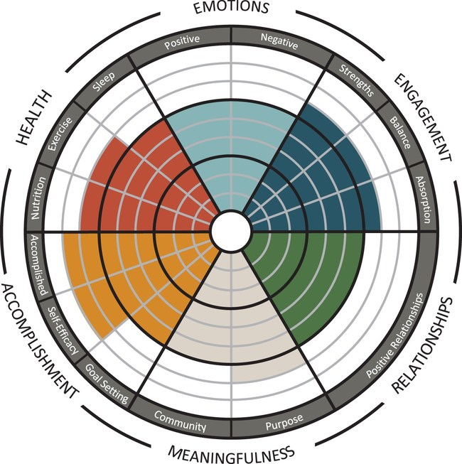 Individual measurement of the pillars of wellbeing