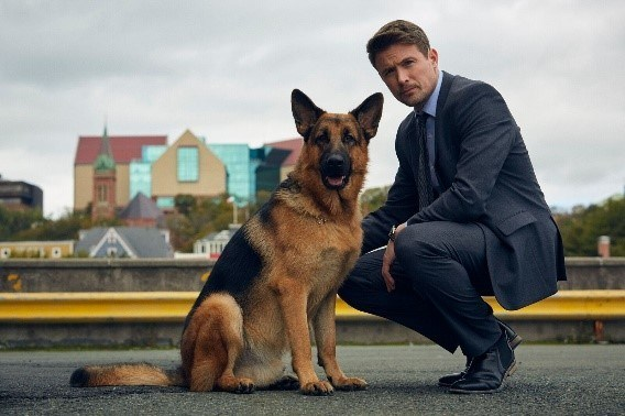 (L-R): Diesel as Rex and John Reardon as Detective Charlie Hudson in REX (Photo by Duncan de Young for Shaftesbury; Copyright: Shaftesbury) (CNW Group/Citytv)