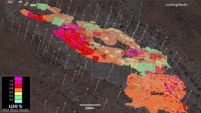 Figure 3. 3D View of Rubicon Main (0.2% Li2O cutoff) and Slimes Block Model (CNW Group/Desert Lion Energy)