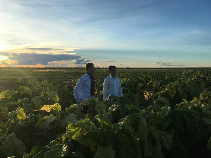 Gamaya helps growers know their land, providing actionable insights to improve the efficiency and sustainability of farming operations. (PRNewsfoto/Gamaya)