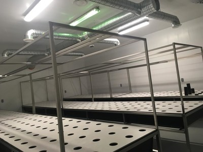 Just Kush grow room #1 - proprietary aeroponic tables in place (CNW Group/Liberty Leaf Holdings)