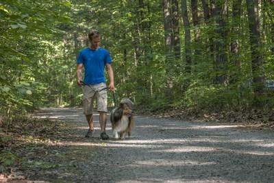 À partir du 17 mai 2019, la présence de chien sera autorisée sous certaines conditions et dans certains secteurs dans une majorité des parcs nationaux du Québec. (Groupe CNW/Société des établissements de plein air du Québec)