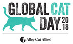 Global Cat Day Is Today