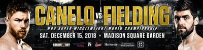 Canelo vs. Fielding, December 15, 2018, New York City