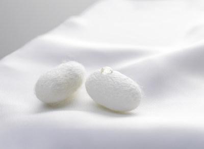 Silk, Inc. - Liquid Silk