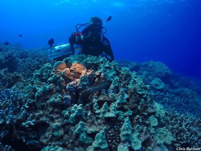 Carnegie's field team collects critical coral reef spectral data to calibrate Planet Dove satellites for Allen Coral Atlas mapping and monitoring mission. Photo by Chris Balzotti.