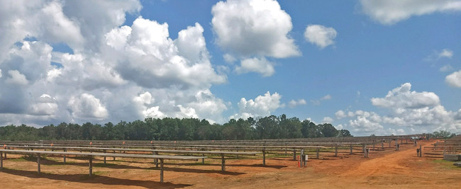 Solar FlexRack's TDP 2.0 Solar Trackers with BalanceTrac installed in Georgia solar projects.
