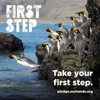 """Twenty-two U.S. aquariums  in 17 states, all members of the Aquarium Conservation Partnership, launched their #FirstStep campaign today (November 1, 2018), urging individuals, businesses and local governments to take a """"first step"""" to reduce plastic pollution by refusing or regulating single-use plastic straws they don't need. The aquariums reach more than 25 million visitors a year. Photo courtesy Aquarium Conservation Partnership"""
