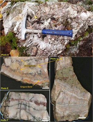 Stockwork and banded quartz veins (CNW Group/Northern Shield Resources Inc.)
