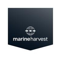 Marine Harvest logo (PRNewsfoto/Marine Harvest)