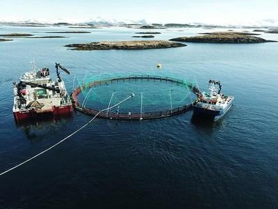 Marine Harvest's Brattholmen salmon farm, Norway