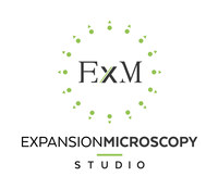 ExM Studio Logo