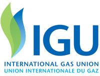 IGU Logo
