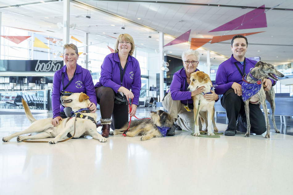 Passengers at Montréal-Trudeau have been enjoying a new entertaining and soothing experience at the airport since the beginning of October. Composed of 30 dogs, the YUL Pet Squad, has been formed by Aéroports de Montréal (ADM) to offer moments of companionship to travellers who can admire the animals and speak with their handlers in the terminal building (CNW Group/Aéroports de Montréal)
